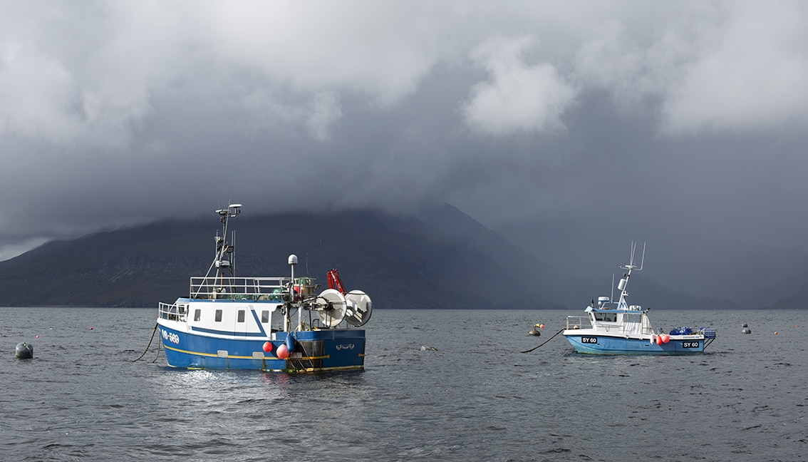 Fishing boats in harbour at Skye