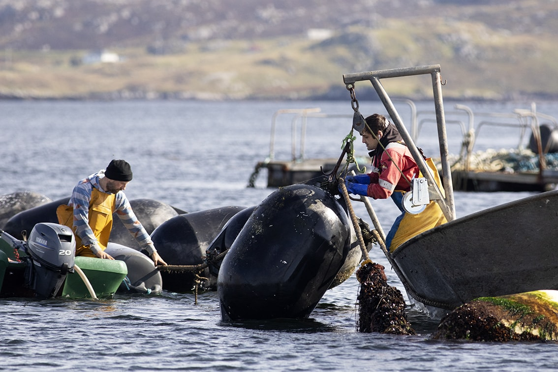 Fishermen working on the coast of the Isle of Lewis